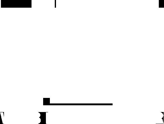 Jiří Mrázek - Webdeveloper